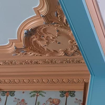 Le salon plafond